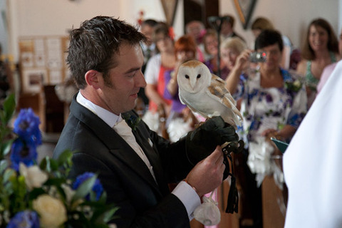 owl delivering wedding ring in church